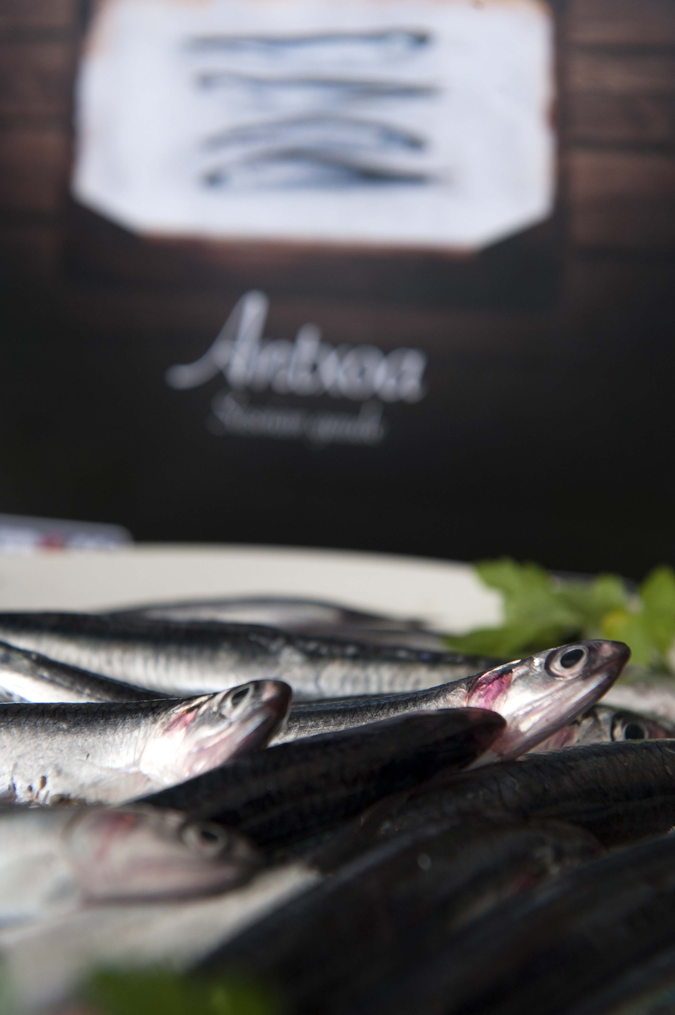 anchoas16.jpg